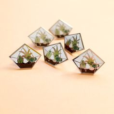 Diamant Terrarium émail Pin Badge broche par finestimaginary