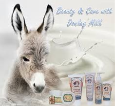 Beauty & Care Beauty Care, Animals, Products, Animaux, Animal, Animales, Gadget, Animais