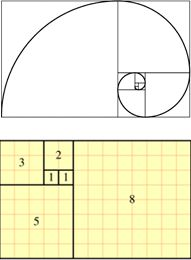 Fibonacci Numbers - A Thorough Explanation