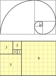 Fibonacci Numbers - A Thorough Explanation