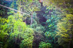 long cable osa palmas canopy tour  Las Palmas, near Puerto Jimenez Osa Peninsula #fun #zipline #costarica