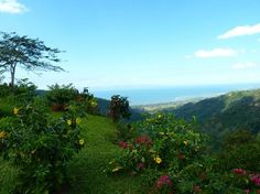 Book your tickets online for the top things to do in Jaco, Costa Rica on TripAdvisor: See 5,343 traveler reviews and photos of Jaco tourist attractions. Find what to do today, this weekend, or in October. We have reviews of the best places to see in Jaco. Visit top-rated & must-see attractions.