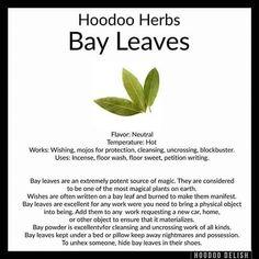 Image may contain: text Hoodoo Spells, Magick Spells, Witchcraft, Jar Spells, Magic Herbs, Herbal Magic, Money Spells That Work, Voodoo Hoodoo, The Conjuring