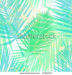 Tropical Palms Stock Photos, Tropical Palms Stock Photography, Tropical Palms Stock Images : Shutterstock.com