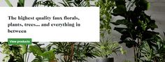 Australia's best artificial flowers, plants and trees. Perfect Image, Perfect Photo, Love Photos, Cool Pictures, Trees To Plant, Plant Leaves, The Body Shop, Artificial Flowers, Florals