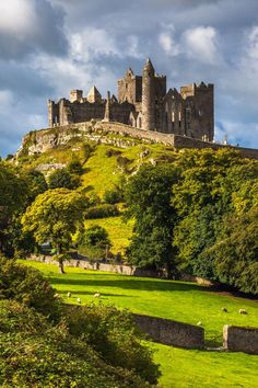 Rock of Cashel Castle in Ireland Felsen des Cashel Schlosses in Irland Ireland Ireland Vacation, Ireland Travel, Ireland Map, Tourism Ireland, Belfast Ireland, Beautiful Castles, Beautiful Places, The Places Youll Go, Places To See