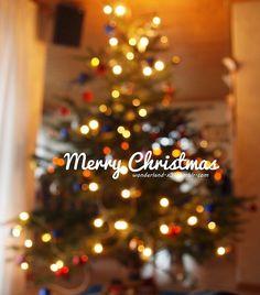 Christmas time ❤