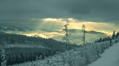 Image for Desktop: winter