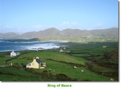 Ring of Beara in Ireland. It's really this gorgeous!!