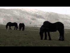 Armenian Duduk Improvisation