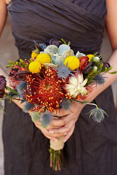 pin cushion protea, billy ball, thistle, and succulent bouquet (photo by Sarah Rhoads)