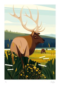 Creation of a panoramic illustration depicting wildlife in the Yellowstone national park in the United states, for the gorgeous french magazine America. Art And Illustration, Illustrations Posters, Animal Illustrations, Retro Kunst, Retro Art, Painting Inspiration, Art Inspo, Doodle Drawing, Guache