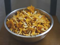 Summer Chanterelles we found in the forest