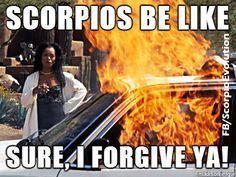 Bildergebnis für scorpio woman memes