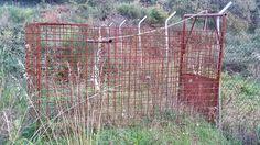 San Piero Patti - Sequestrata una gabbia a ghigliottina per la cattura dei cinghiali - http://www.canalesicilia.it/san-piero-patti-sequestrata-gabbia-ghigliottina-la-cattura-dei-cinghiali/ Cinghiali, San Piero Patti, sequestro