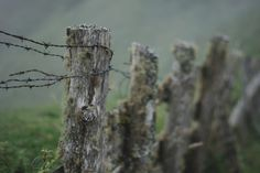 !      Javier Rey - Flickr - Behance - Vimeo - Facebook - Twitter