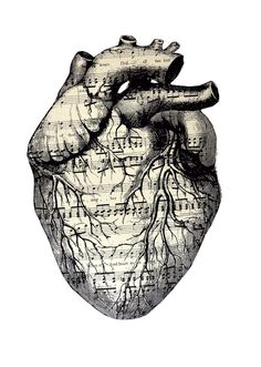 music sheet anatomical heart