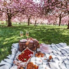 Throwback to picnic under the sun  #paris #france #picnic