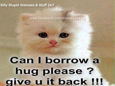 Can I borrow