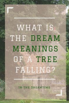What is the dream meanings of a tree falling upon you and being hooked up to a machine? Read on to find out…