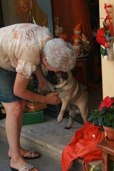 창작자들의 놀이터 : 그라폴리오 Life Is A Journey, Dogs, Animals, Life's A Journey, Animales, Animaux, Pet Dogs, Doggies, Animal