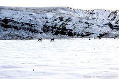 Split Mountain Utah, Vernal Dinosaur National Monument