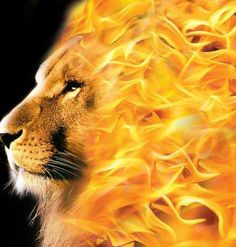 FOR OUR GOD IS A CONSUMING FIRE!   Hebrews 12:29 Could be a cooll concept for a painting.