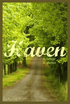 Baby Girl or Boy Name: Haven. Meaning: Refuge; Shelter. Origin: English. http://www.pinterest.com/vintagedaydream/baby-names/