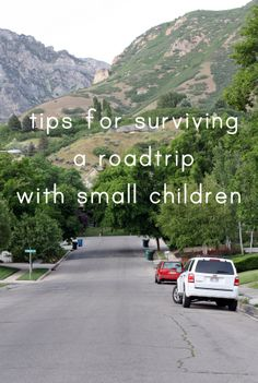 8 Tips for Surviving a Road Trip with Small Children