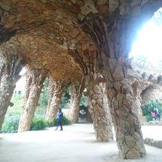 Barcelona Spain, Plants, Flora, Plant