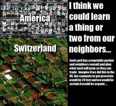 I think America could learn a thing or two from Switzerland. Weird Facts, Fun Facts, Haha, Save Our Earth, Faith In Humanity Restored, Thing 1, The More You Know, Social Issues, Sustainable Living