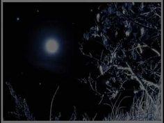 Cseke Anna - Szép Csillagos az ég Celestial, Outdoor, Outdoors, Outdoor Living, Garden