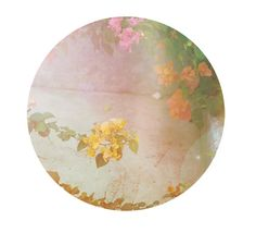 The Round Series N6 8x8 Fine Art Photographic by MilesOfLight
