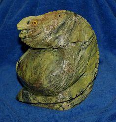 Serpentin Leguan