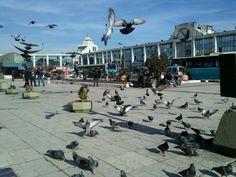 Büyük İstanbul Otogarı in Bayrampaşa, İstanbul