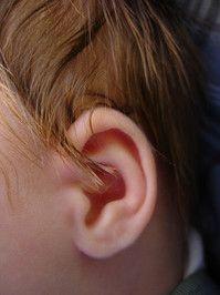 Infant Ear