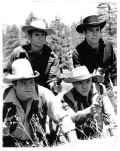 Those Bonanza Boys!  Were they a man for every kind of woman or every kind of man for one woman!  Over time, I loved them all!