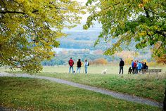 Blick vom Michaelsberg in die Rheinebene