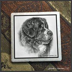 Animal Paintings, Animal Drawings, Cool Drawings, Dog Nail Art, Dog Art, Bernese Mountain, Mountain Dogs, Art Sketches, Fashion Sketches