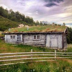 Instagram photo by tliell - Seterhus i #Rausjødalen #tolga #hedmark #norge #