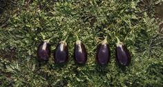 Eggplant Eggplant, Vegetables, Food, Essen, Eggplants, Vegetable Recipes, Meals, Yemek, Veggies