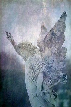 Angel......watching❤️2.8.2015