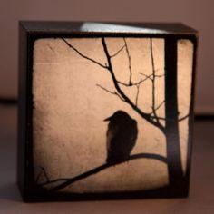 Black Crow Waiting 4x4 Original Fine Art by Ketzelphotography