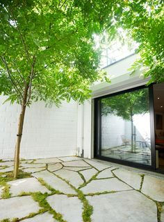 tuinarchitect_steyaert_brussel_patio