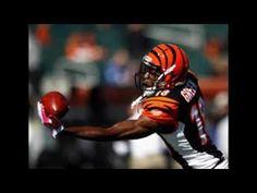 Cincinnati Bengals New Free NFL app AFC North Paul Brown Stadium Ohio