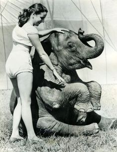 Vintage photo circus / carnival performers with elephant Old Circus, Night Circus, Circus Book, Vintage Circus Photos, Vintage Photographs, Ringling Brothers Circus, Water For Elephants, Circus Elephants, Circus Performers