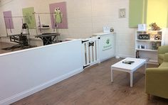 -repinned- dog grooming salon decorating ideas