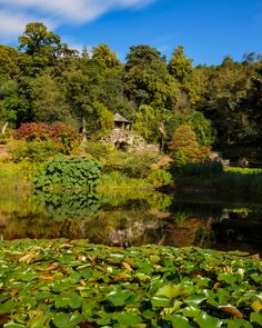 Grotto and Pond at Chatsworth House in the Peak District National Park  #beautiful #blue #britain #british #chatsworth #district #england #english #flower #garden #green #grotto #house #kingdom #lake #landscape #lily #national #nature #outdoors #park #peak #plant #pond #scenic #sky #tree #uk #united #water