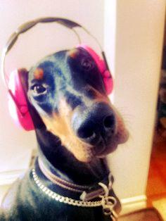 DJ #Dobe