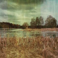 Färna Landscape Polaroid Photo - Dan Isaac Wallin